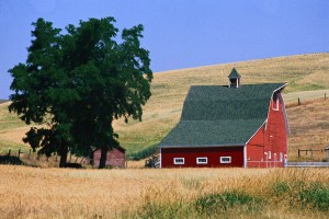 Red Barn on Washington Farm Washington, USA